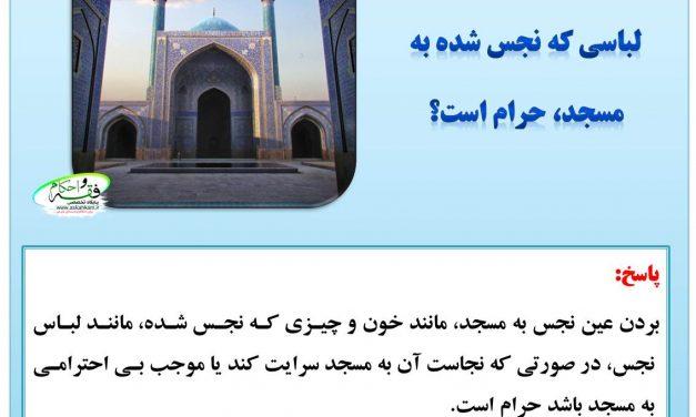 آیا بردن عین نجس یا لباسی که نجس شده به مسجد، حرام است؟