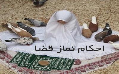 اختلاف مرجع میت و نائب در نماز های قضا